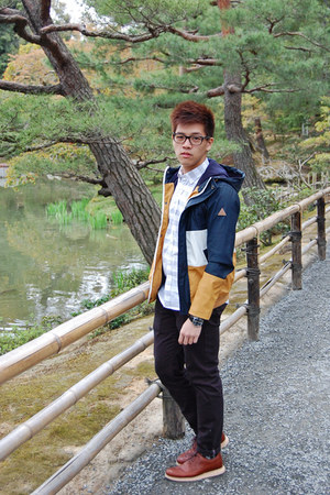 gold Bershka jacket - brown Cole Haan shoes - white Uniqlo shirt