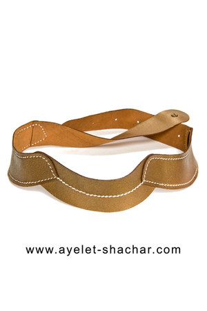 Ayelet Shachar belt