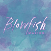BlowfishShoes