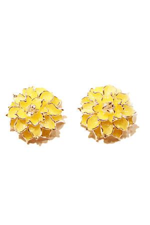 unbranded earrings