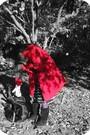Red-kiss-coat-navy-forever21-shirt-navy-forever21-skirt-purple-forever21-t