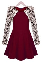 Sweet Lace Overlay A-line Dress
