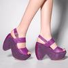 VioletR