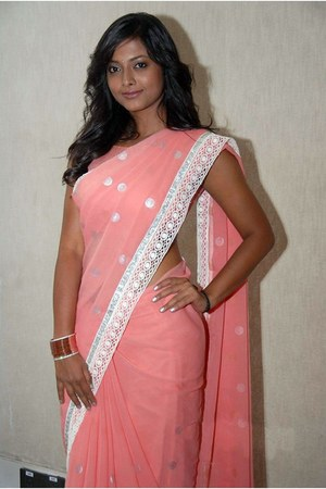 Pink Saree dress