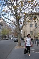 shirt - bow - Zara coat - YSL purse