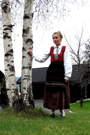 norvegian dress dress
