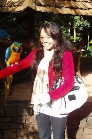 parrot!!