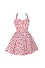 Styleiconscloset-dress